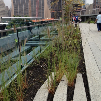 The Paving Language Typical of the High Line