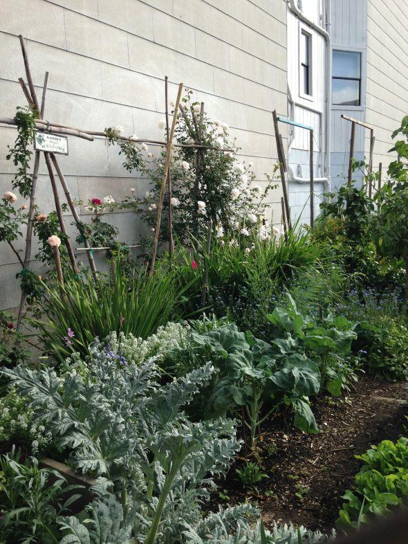 Mission District Community Garden